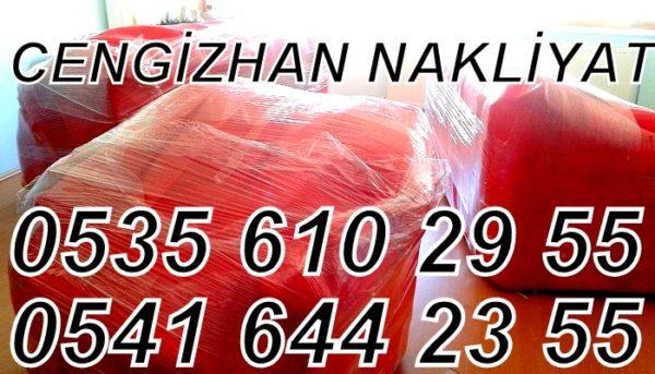 Cengizhan İstanbul Nakliyat
